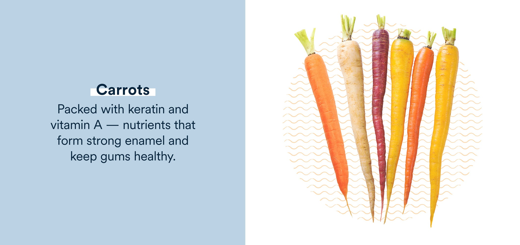 carrots are packed with nutrients that form strong enamel