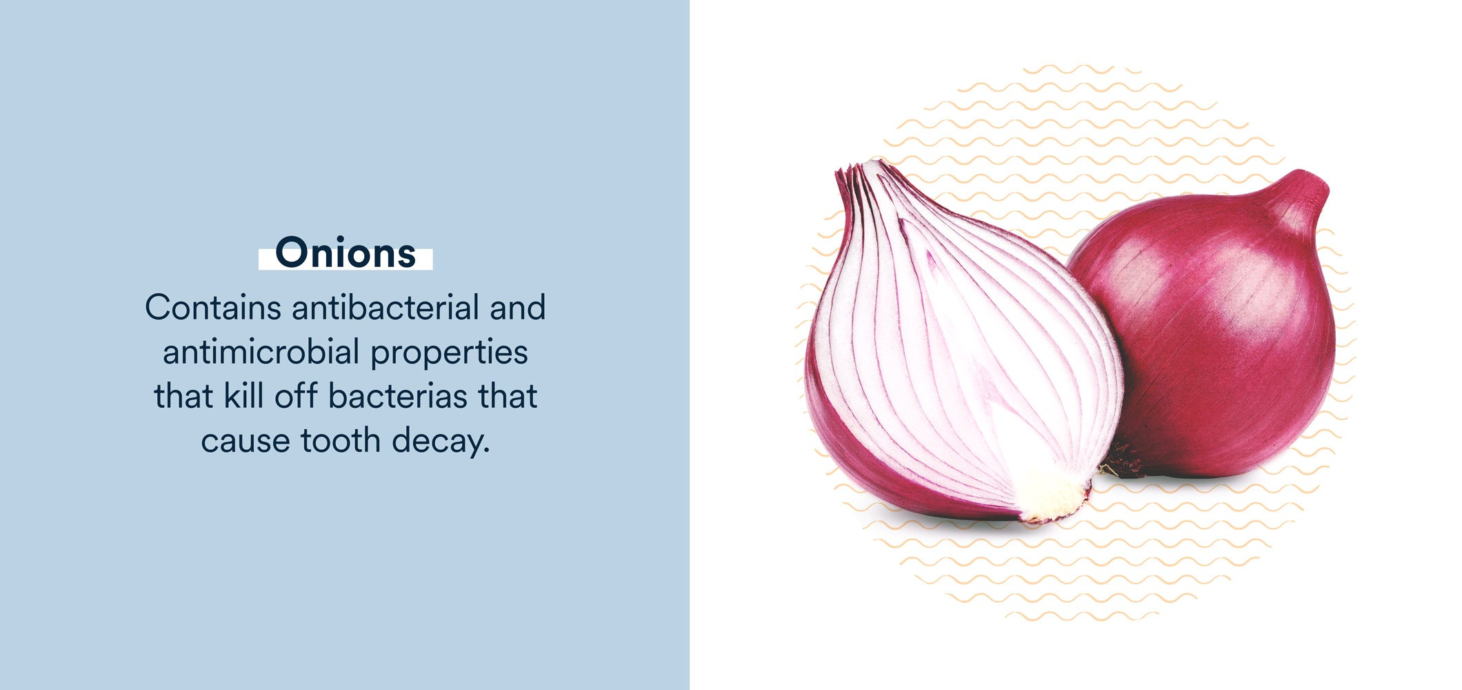 onions contain antibacterial and antimicrobial properties