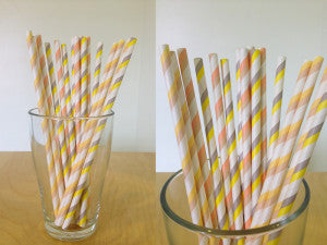 Paper Straw - 2 color stripes