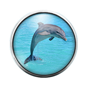 Dolphin- 18MM Glass Dome Candy Snap Charm GD1094