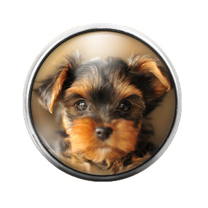 Dog - 18MM Glass Dome Candy Snap Charm GD0499