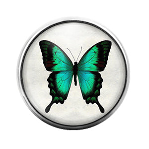 Butterfly- 18MM Glass Dome Candy Snap Charm GD1101