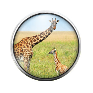 Giraffes - 18MM Glass Dome Candy Snap Charm GD0512