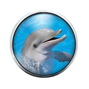 Dolphin- 18MM Glass Dome Candy Snap Charm GD1095