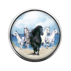 Horses - 18MM Glass Dome Candy Snap Charm GD0673