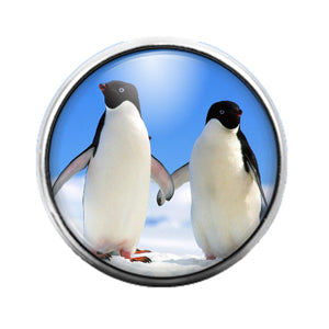 Penguins - 18MM Glass Dome Candy Snap Charm GD0606