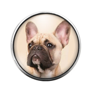 French Bulldog- 18MM Glass Dome Candy Snap Charm GD1023