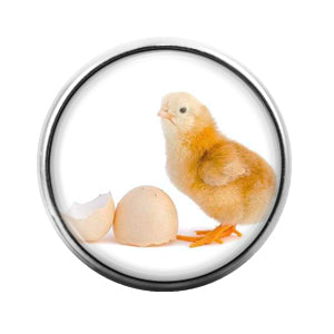 Chicken - 18MM Glass Dome Candy Snap Charm GD0502