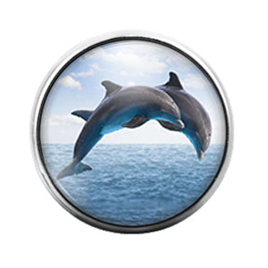 Dolphins- 18MM Glass Dome Candy Snap Charm GD1100