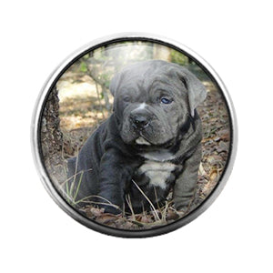 Dog- 18MM Glass Dome Candy Snap Charm GD1052