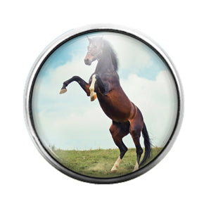 Horse - 18MM Glass Dome Candy Snap Charm GD0759