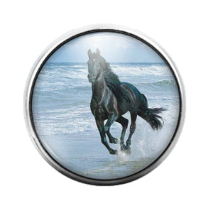 Horse - 18MM Glass Dome Candy Snap Charm GD0760