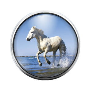 Horse - 18MM Glass Dome Candy Snap Charm GD0761