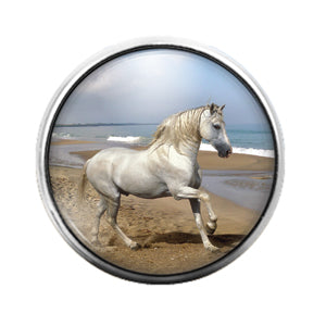 Horse - 18MM Glass Dome Candy Snap Charm GD0762