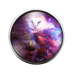 Owl Bird - 18MM Glass Dome Candy Snap Charm GD1469