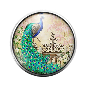 Peacock Bird - 18MM Glass Dome Candy Snap Charm GD1479