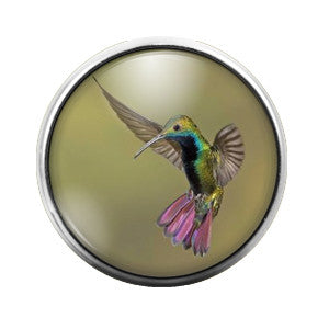 Hummingbird- 18MM Glass Dome Candy Snap Charm GD0070