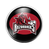 Arkansas Razorbacks - 18MM Glass Dome Candy Snap Charm GD0026