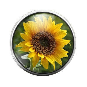 Sunflower Flower - 18MM Glass Dome Candy Snap Charm GD0076