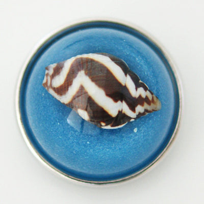 1 PC 18MM Blue Brown White Shell Set in Glass Silver Candy Snap Charm kg6020 CC1137