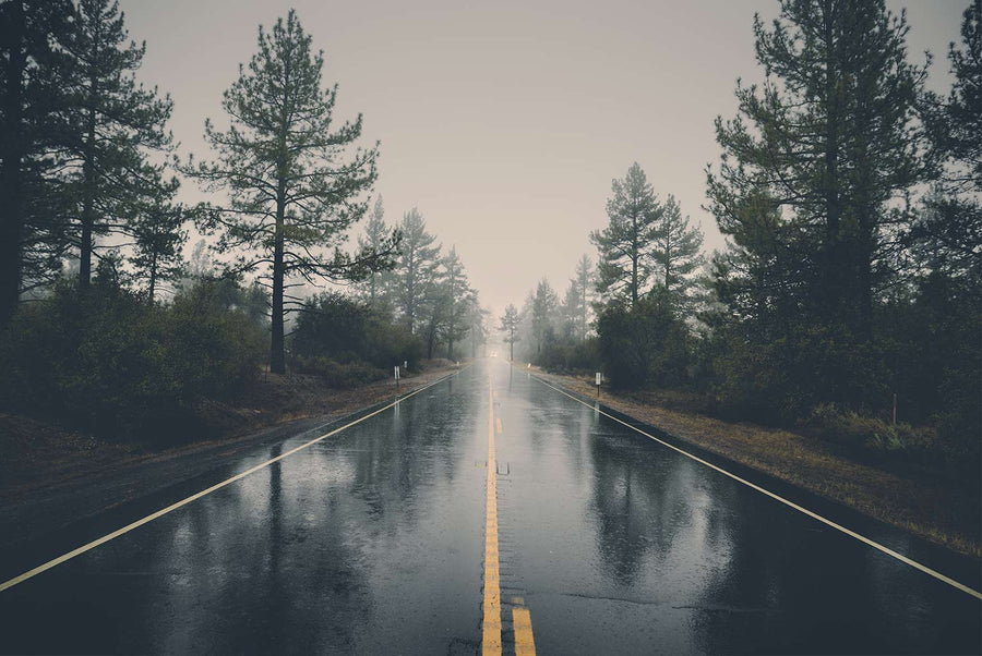 Rainy Road Photo by veeterzy from Pexels