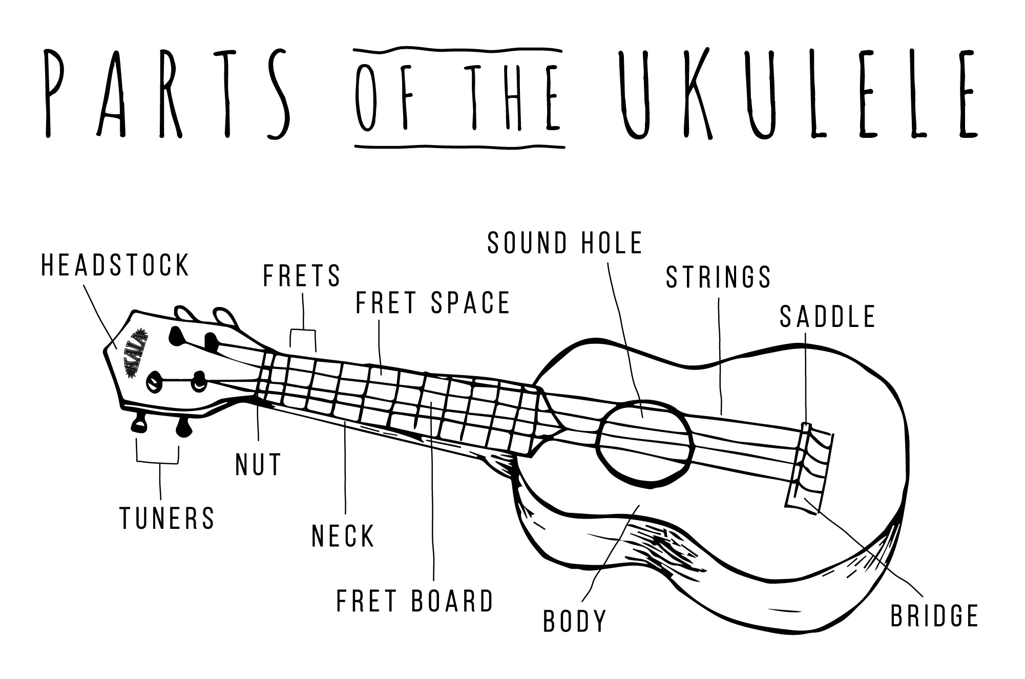 Getting to know your uke kala brand music co drawn diagram of an ukulele with parts labeled including headstock tuners nut neck pooptronica