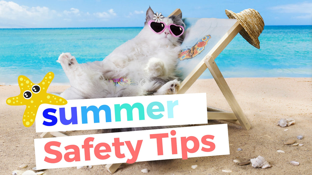 ViviPet | Summer Safety Tips for Cats