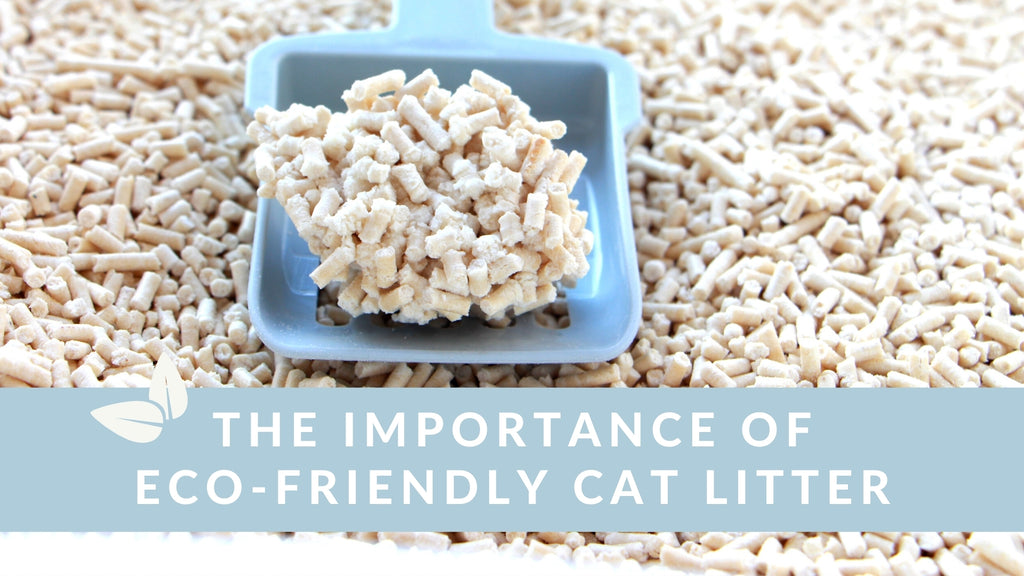 ViviPet | The Importance of Eco-Friendly Cat Litter🌿