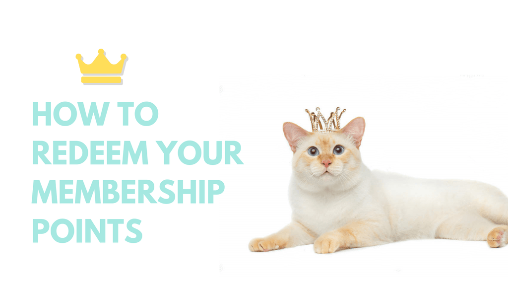 ViviPet | How To Redeem Your Kitty Points