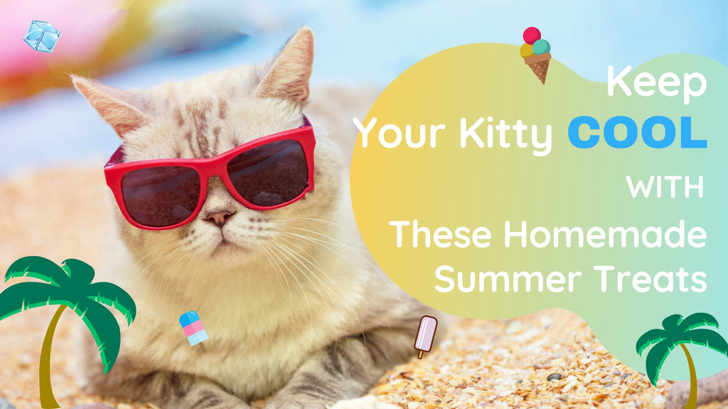 ViviPet | Keep Your Kitty Cool with These Homemade Summer Treats