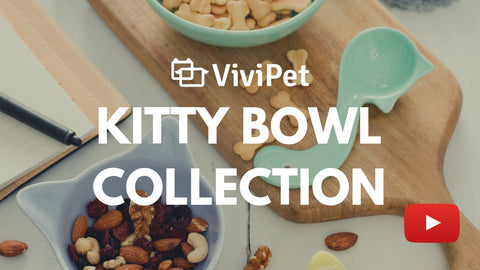 Kitty Bowl collection