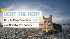 Beat the heat. Keep cool in the summer.