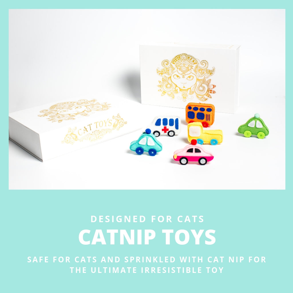 ViviPet Designed | City Cat Car Toy - Individually Packaged - VIVIPET