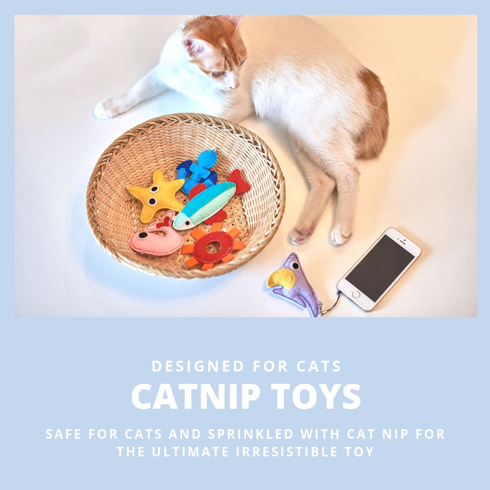 ViviPet Designed | Under The Sea Cat Toy Box - VIVIPET