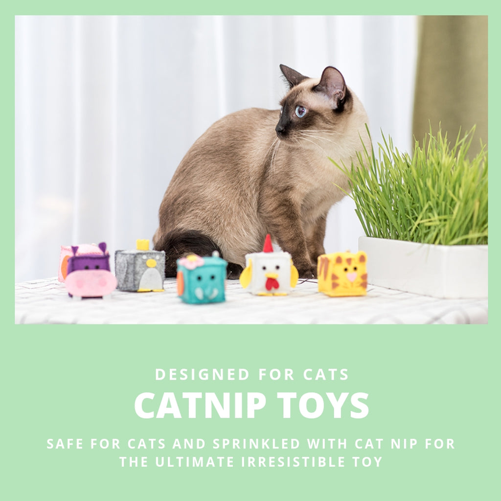 ViviPet Designed | Zoo Buddies Cat Toy Box - VIVIPET