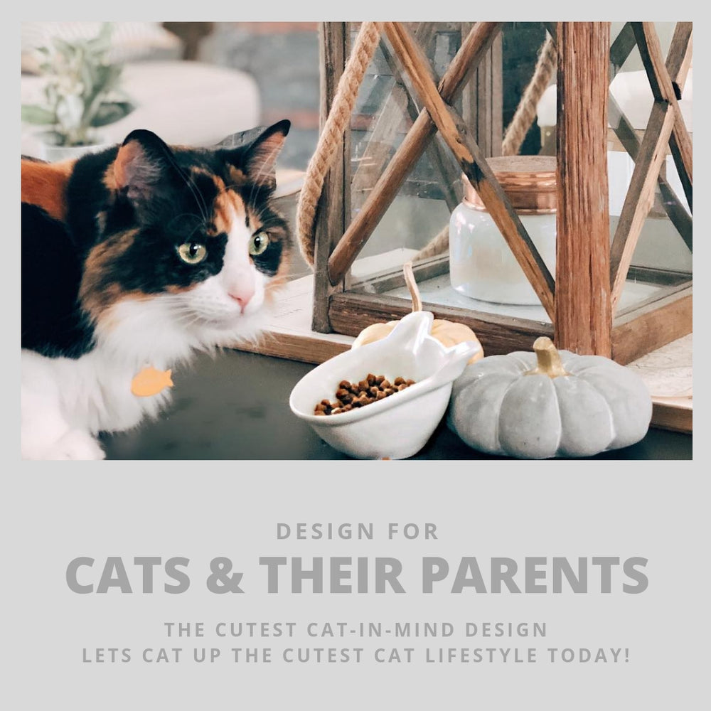 ViviPet Designed | Ceramic Mini Kitten Bowl Combo Set - VIVIPET