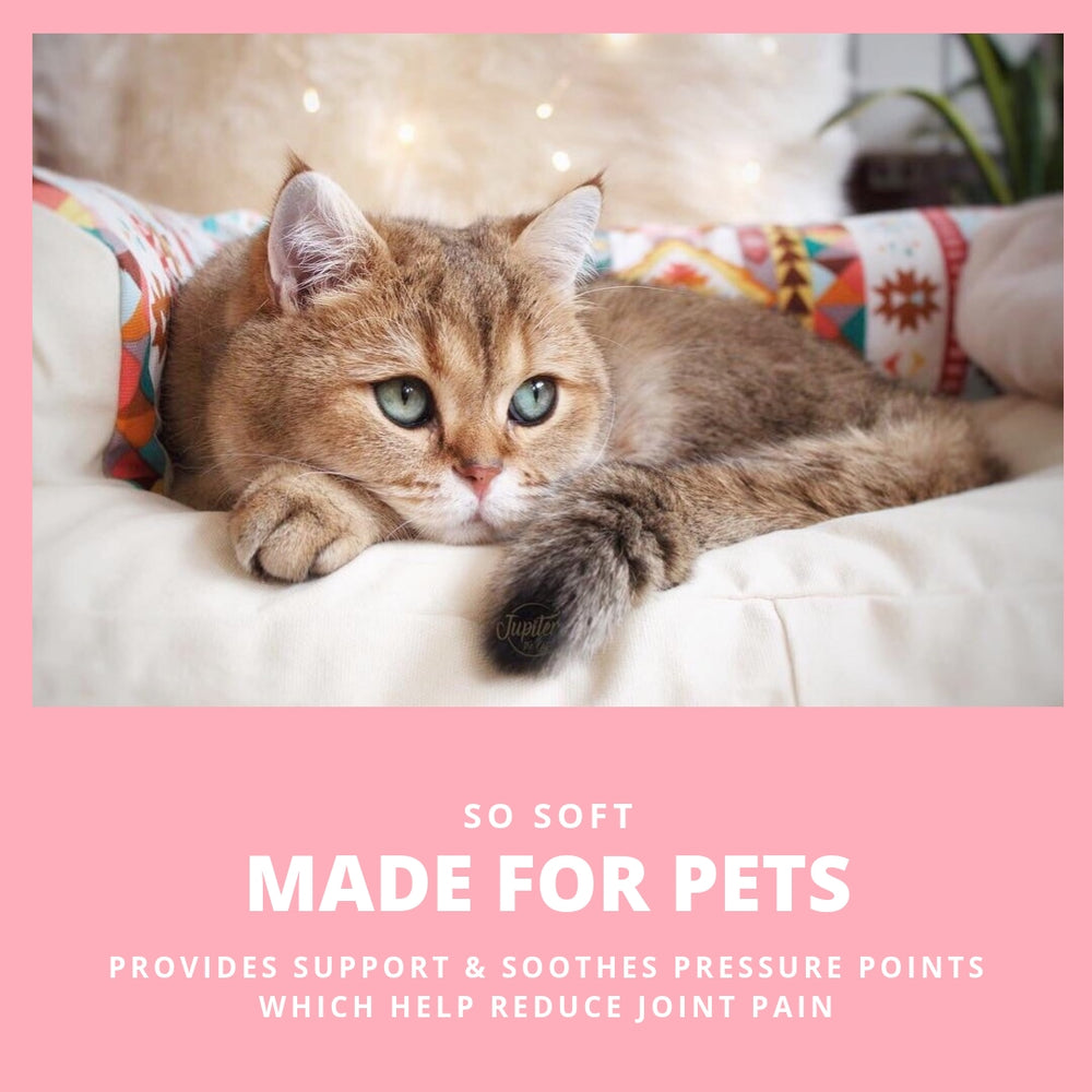 ViviPet Designed | Deluxe Pet Bed Cover - VIVIPET