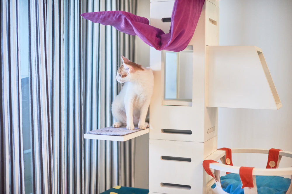 ViviPet Designed | Supreme Cat Tower (Black Only) - VIVIPET