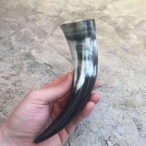 Small Drinking Horn Coated with Lacquer on the Inside Approx 100ml-Drinking Horn-Viking Merch