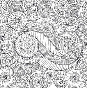 Peaceful Paisleys Artists Colouring Book