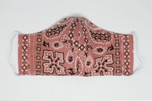 Load image into Gallery viewer, Dusty Pink Paisley Face Mask