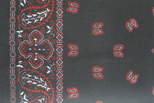 Load image into Gallery viewer, Paisley Border Bandanas