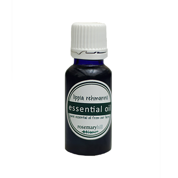 Lippia Rehmannii Essential Oil - 30 ml
