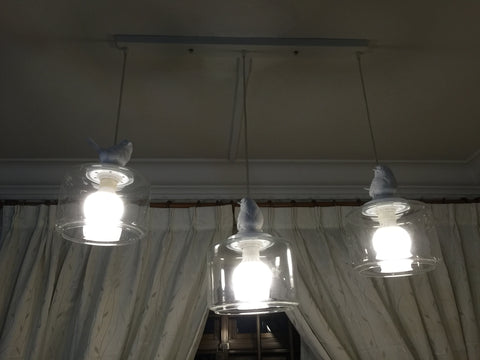 Bay Bird Glass Pendant Lighting Singapore