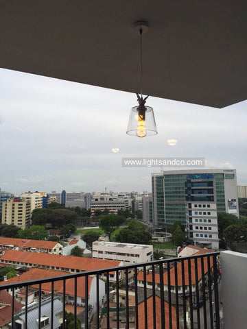 Lighting Singapore - BAY Duck on Glass Pendant Light for Balcony