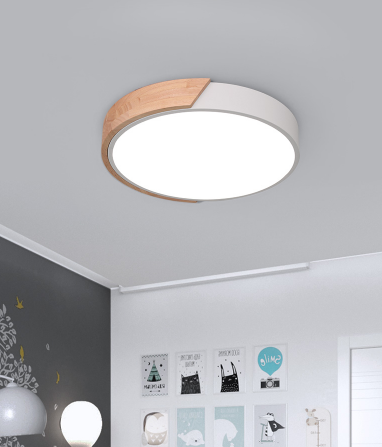 ARTRA Scandinavian LED Ceiling Light