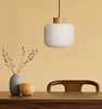 Lighting Singapore - SHINZO Glass Pendant Light 2