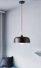 ZONIUS Pendant Light in Black (Pre-order)