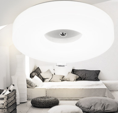 LITHONIA Double Ring LED Ceiling Light (Pre-order)