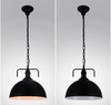 ALGATE Dome Pendant Light